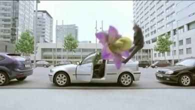 AMBI PUR CAR – Flor