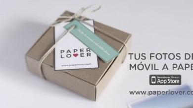 Paper Lover Short