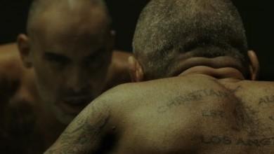 VIF (trailer)